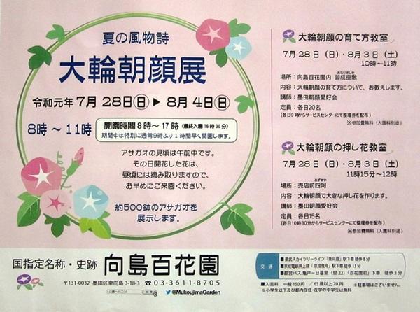 朝顔展ポスター.JPG
